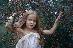Stylized portrait of a little girl near a cherry tree Stock Photos