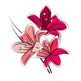 Stylized red lily  Stock Image