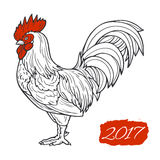 Stylized red rooster hand drawn in lines isolated on white background. 2017 symbol. Vector illustration. Can be used for Stock Photos
