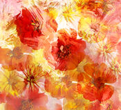 Stylized red and yellow zinnia on grunge stained background Royalty Free Stock Images