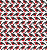 Stylized seamless pattern with bullfinches Royalty Free Stock Images