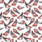 Stylized seamless pattern with bullfinches Stock Image