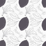 Stylized seamless pattern with hand drawn lemon, leaves and bubbles Stock Images