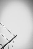 Stylized Security Fence Detail Royalty Free Stock Image