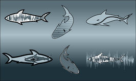 Stylized shark Stock Photos