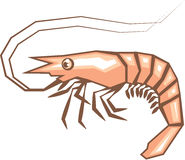 Stylized shrimp vector Stock Photo