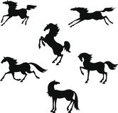 Stylized silhouette of horses Royalty Free Stock Image