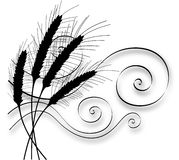 Stylized Silhouette Wheat and Wind. Four hand drawn stalks of silhouetted stylized wheat bending in wind royalty free illustration