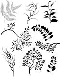 Stylized silhouettes of branches and decorative pl Royalty Free Stock Images