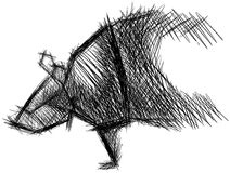 Stylized sketch of an armadillo isolated Stock Photos