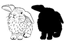 Stylized Sketch of a Bunny Royalty Free Stock Photo
