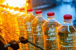 stylized solros f?r droppe olja Fabrikslinje av produktion och fyllning av f?r?dlad olja fr?n solrosfr? arkivfoto