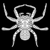 Stylized spider. Animals. Royalty Free Stock Photo