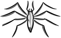 Stylized Spider isolated in grey tones Stock Photos