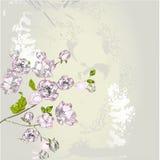 Stylized spring background. Stylized spring flowers on grey background Stock Photography
