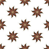 Stylized star anise seamless pattern. Brown elements on white background. Stock Photography