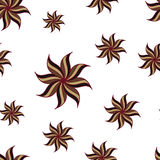 Stylized star anise seamless pattern. Brown elements on white. Stock Photography