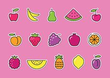 Stylized stickers with fruits. Vector icons Stock Image