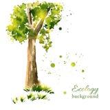 Stylized summer tree Royalty Free Stock Image