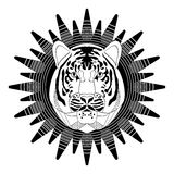 Stylized tiger head on star shape background, symmetrical drawing in monochrome design, white and black. Useful as emblem, tattoo Stock Photos