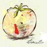 stylized tomat Arkivbild