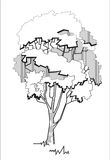 Stylized tree 2. Vector illustration of tree stylized drawing Stock Photos