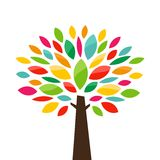 Stylized tree. Abstract stylized color tree icon. Vector illustration Royalty Free Stock Photography