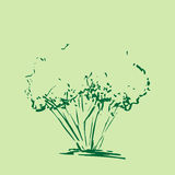 Stylized tree. Hand drawn tree sketch silhouette isolated on green background. Royalty Free Stock Photos