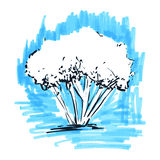 Stylized tree. Hand drawn. Tree sketch silhouette on light blue background. Vector illustration. Vintage engraved background Stock Image