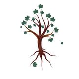 Stylized tree with leaves,  illustration Stock Image