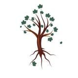 Stylized tree with leaves,  illustration Stock Image