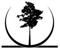 Stylized tree logo in black isolated Stock Photos