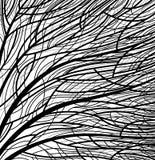 Stylized tree pattern Stock Image