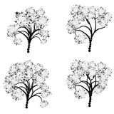 Stylized Tree Silhouette Royalty Free Stock Photo