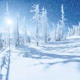 stylized treevinter för illustration snow Carpathian Ukraina, Europa Bokeh ljust ef Arkivbild