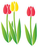 Stylized Tulips Stock Photo