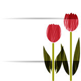 Stylized tulips Stock Images