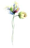 Stylized Tulips flowers Stock Photo