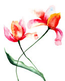 Stylized Tulips flowers. Watercolor painting Stock Images