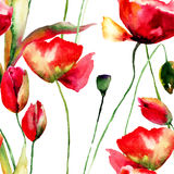 Stylized Tulips and Poppy flowers illustration. Seamless pattern Stock Photos
