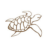 Stylized turtle Royalty Free Stock Images