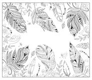 Stylized Various Feathers For Coloring Page. Royalty Free Stock Photo