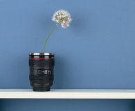 Stylized vase-objective with flower on white  shelf on blue wall Royalty Free Stock Image