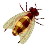 Stylized vector bee Royalty Free Stock Images