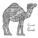 Stylized vector camel, zentangle isolated on white background. Royalty Free Stock Photo