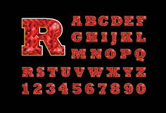 Stylized  vector sparkling jeweled Ruby precious stone  fancy latin abc alphabet. Use letters to make your own text. Stock Photo