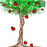 Stylized vector tree with apples Royalty Free Stock Photo