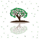 Stylized vector tree Royalty Free Stock Photos