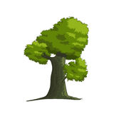 Stylized vector tree Stock Photo
