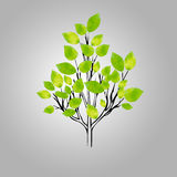 Stylized vector tree. In triangle design Royalty Free Stock Photography
